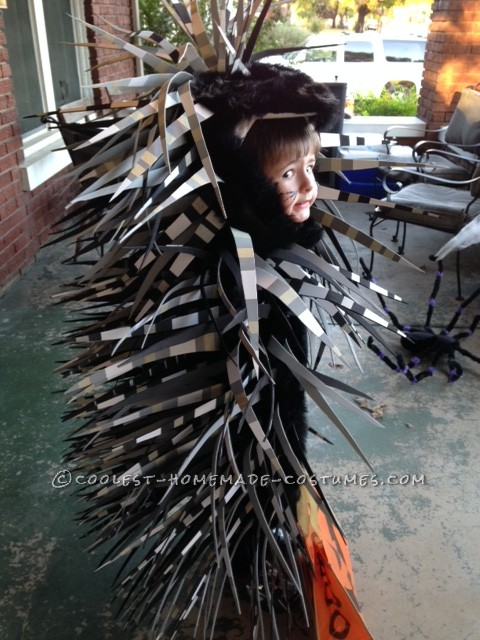 Coolest Parrot and Porcupine Costumes - 9