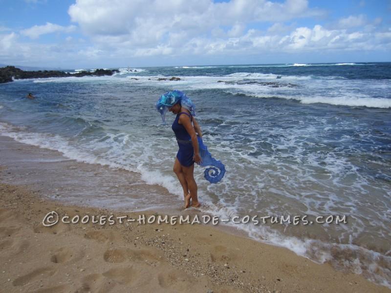 The seahorse where it belongs, in the ocean!