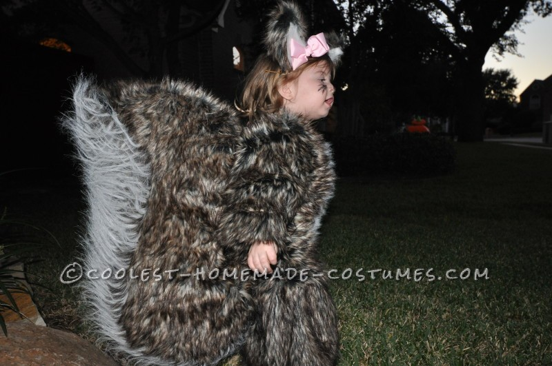 People Go NUTS for Toddler Squirrel Costume - 5