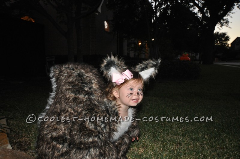 People Go NUTS for Toddler Squirrel Costume - 6