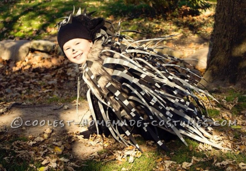 Cool Porcupine Costume That's Safe for Kids - 1