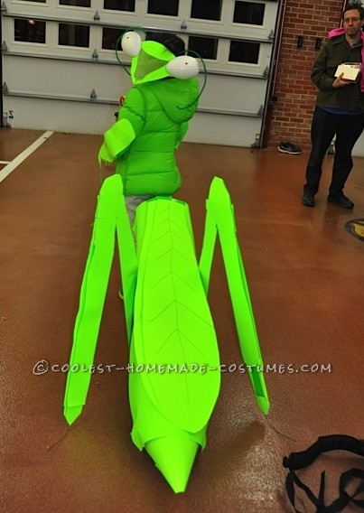 Praying Mantis Costume, Back View