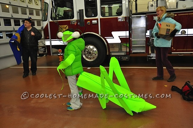 Praying Mantis Costume, Side View