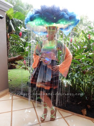 Super Original Homemade Rain Cloud Costume