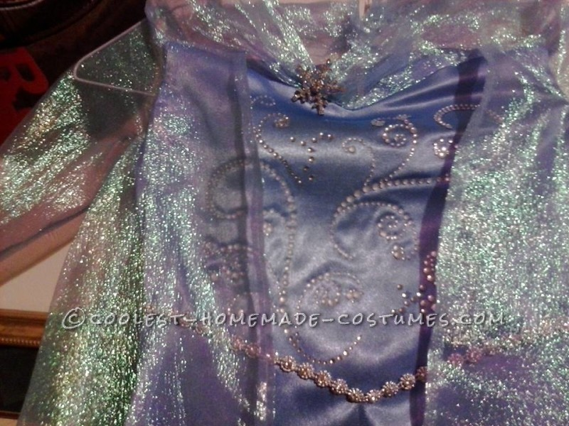 details on the bodice
