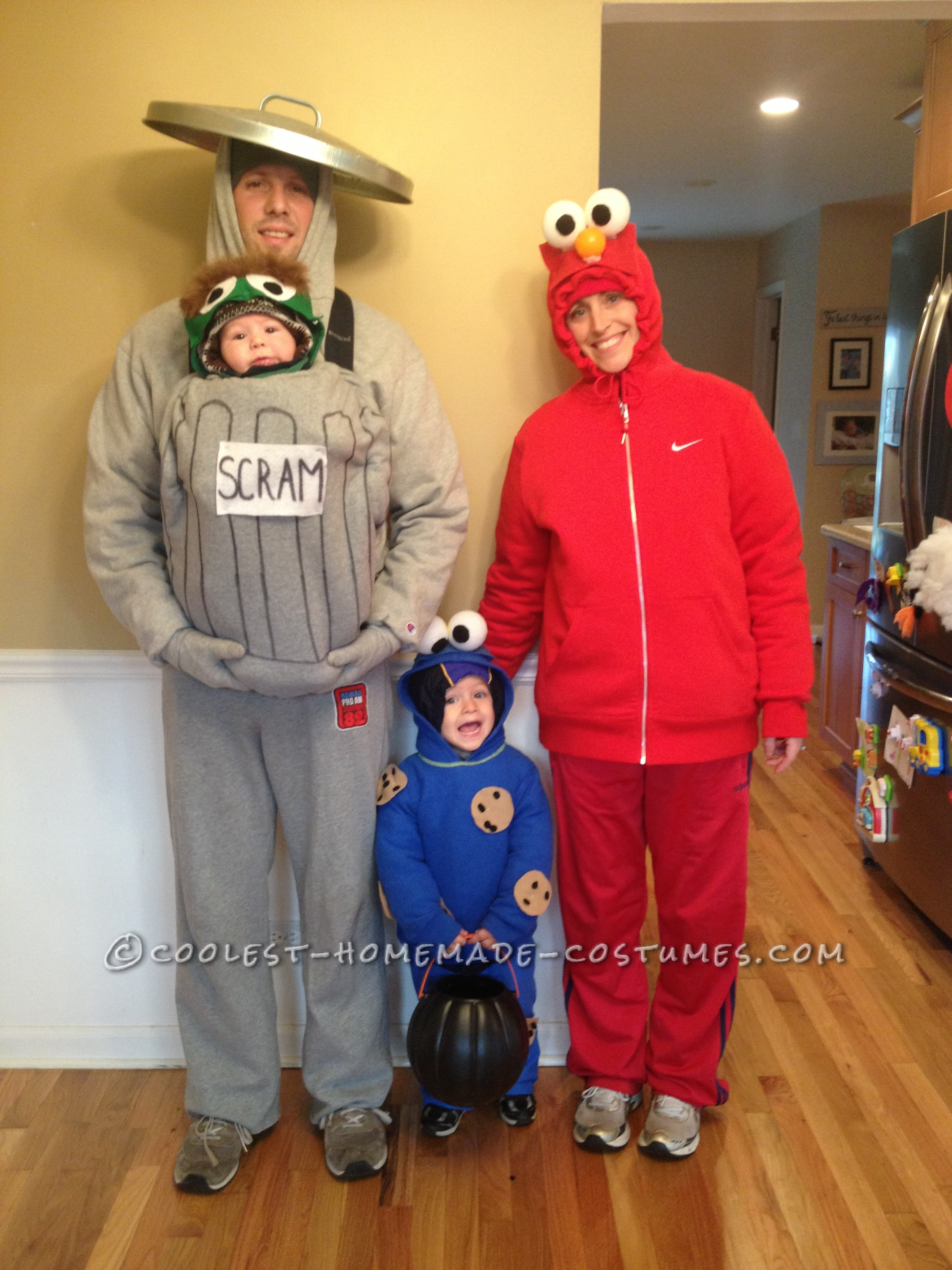 Cool Homemade Sesame Street Family Costumes