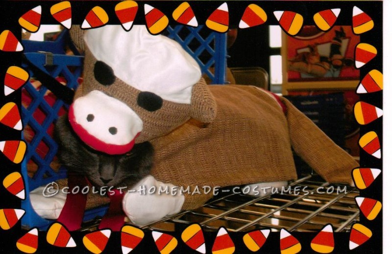 Coolest Sock Monkey Cat Costume