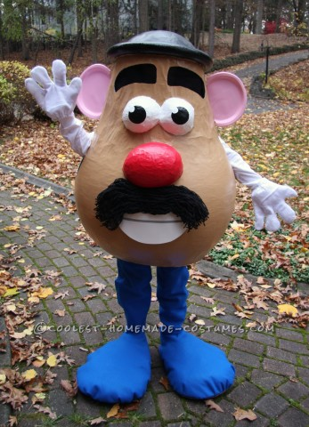 Awesome Life Sized Mr Potato Head Costume