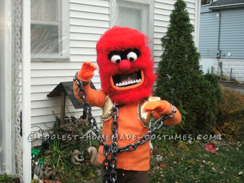 Coolest Homemade Muppets Group Costume - 5