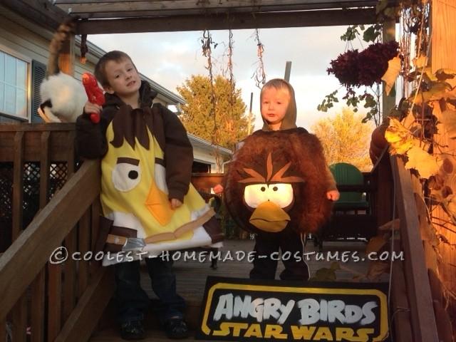 Han Solo Yellow Bird and Chewbacca Brown Fury Bird