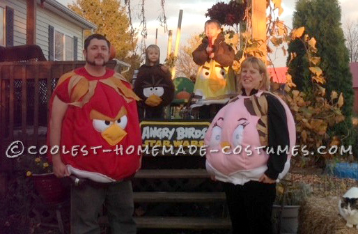 The Star Wars Angry Birds Family Costume