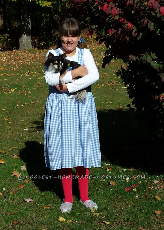 The Wizard of Oz Family Costume:  Recycled and Reprocessed