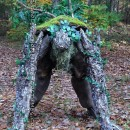 Cool DIY Lord of the Rings Tree Ent (Tree Monster) Costume