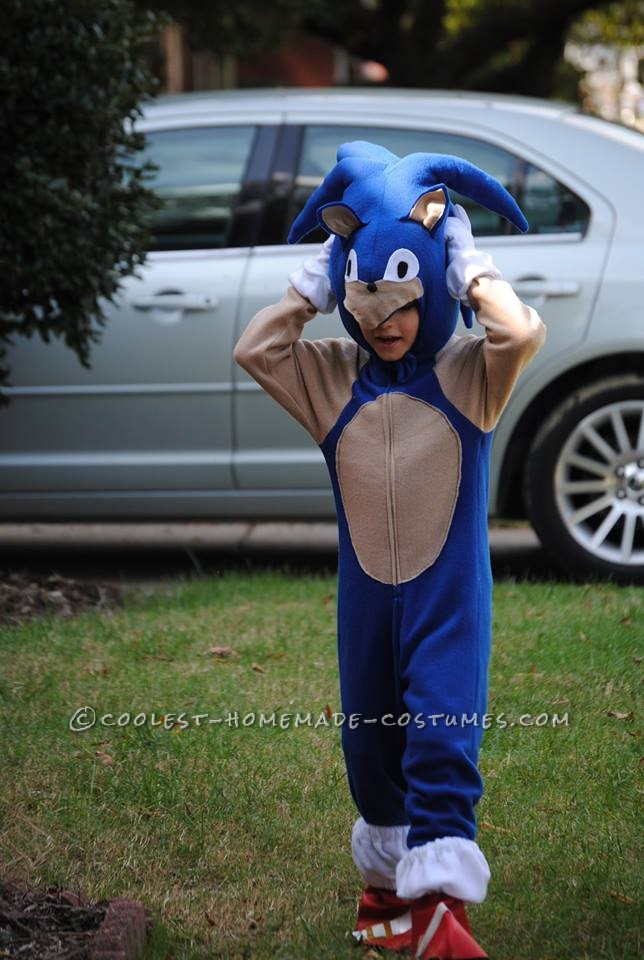 Cool Homemade Sonic the Hedgehogn Costume