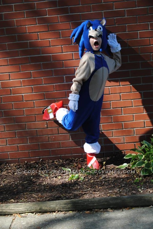 Cool Homemade Sonic the Hedgehogn Costume - 1