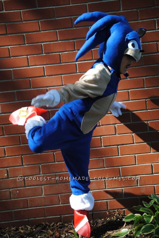 Cool Homemade Sonic the Hedgehogn Costume - 2