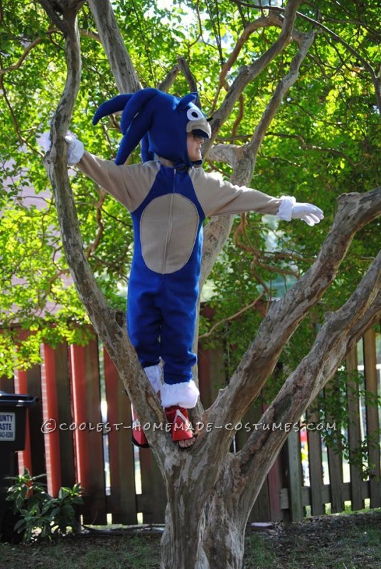 Cool Homemade Sonic the Hedgehogn Costume - 3