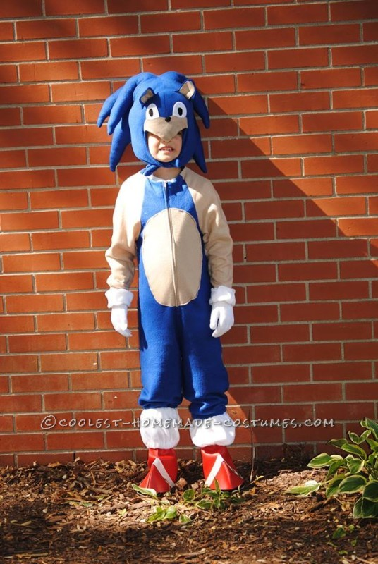 Cool Homemade Sonic the Hedgehogn Costume - 4