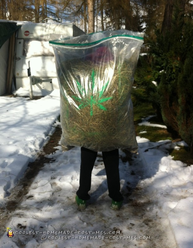 Hilarious Bag of Weed Costume! - 1