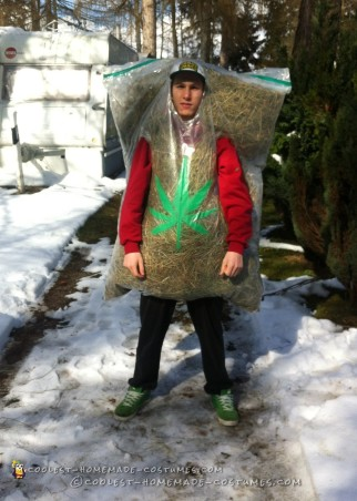 Hilarious Bag of Weed Costume!