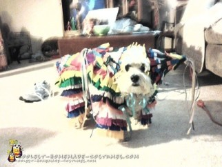 My Real Doggie Pinata Costume