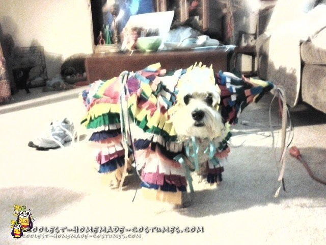 Mickey in her Pinata Costume