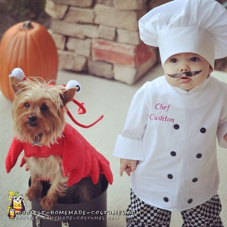 Baby Chef and Dog Lobster