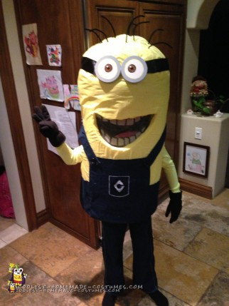 Minion Madness Homemade Halloween Costume