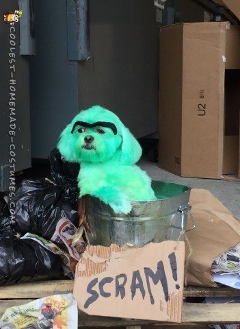 Missy as Oscar the Grouch!