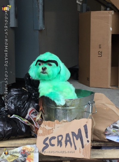 Doggie Doubles as Oscar the Grouch Costume