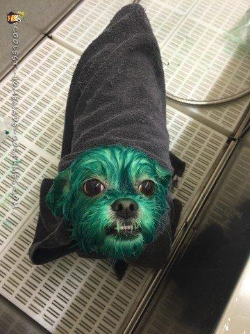 Dying Missy Monster Green!