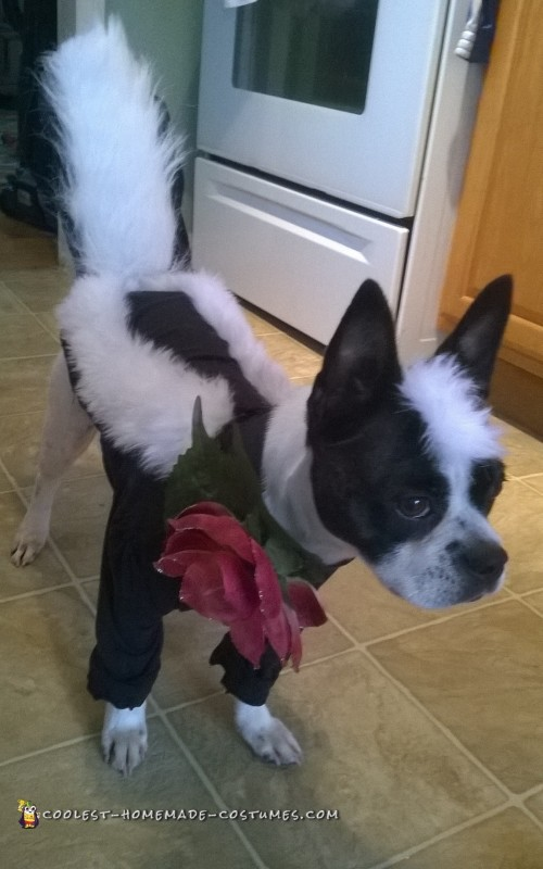 Handmade Flower the Skunk from Bambi Dog Costume - 2
