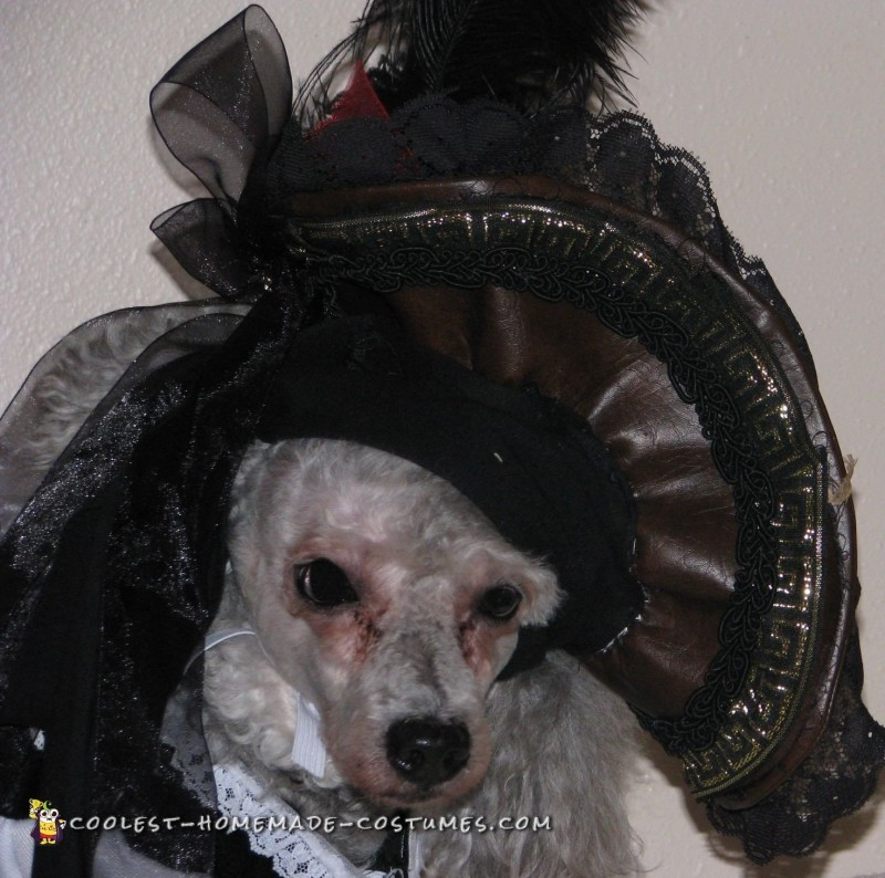 Jack Sparrow and Elizabeth Swann Dog Costumes - 2
