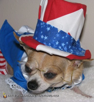 Homemade Dog Costume: Tequila Rose For President