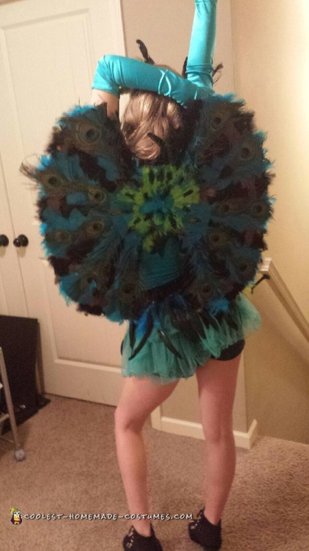 Pretty Peacock Costume for Teenage Girl - 2