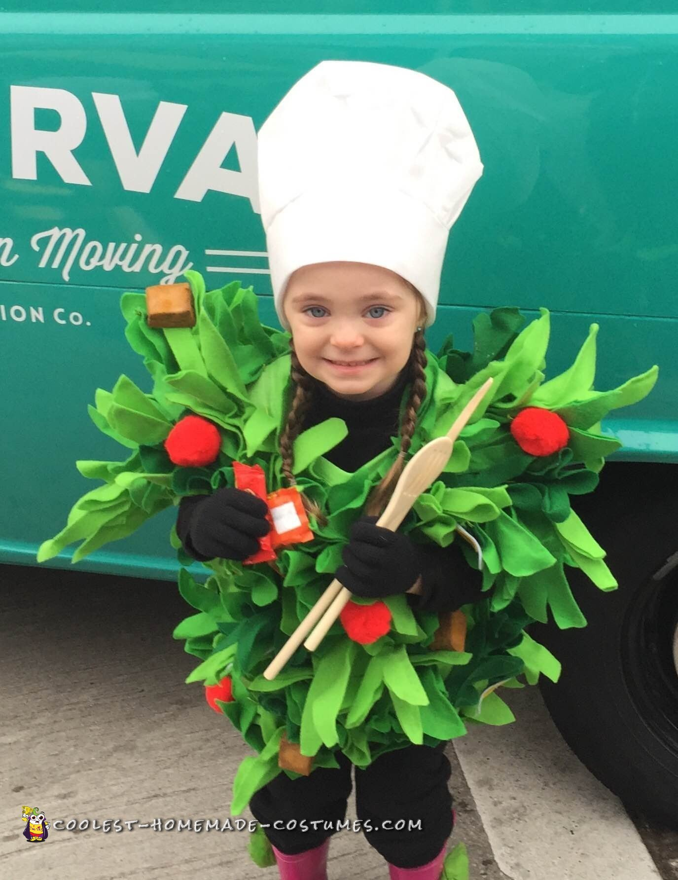 Awesome Chef Salad Costume