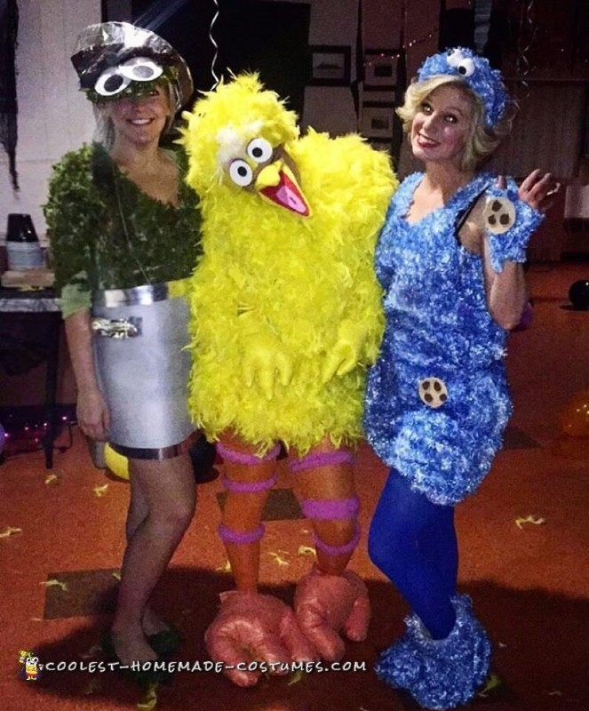 Cute Sesame Street Costume Ideas