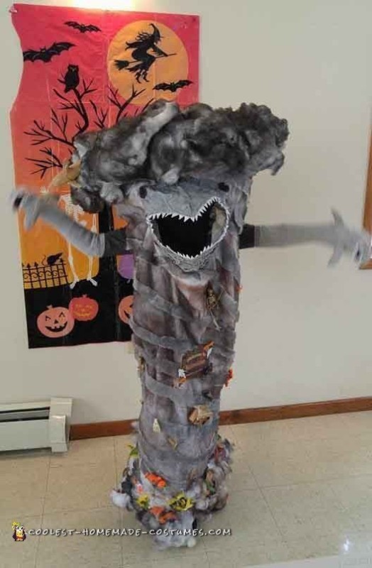 front view of sharknado