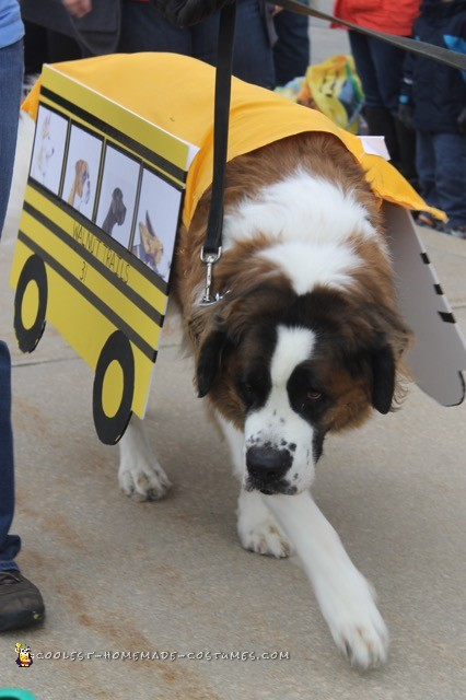 Therapy Dog School Bus Costume - 3