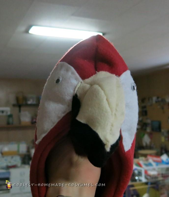 Parrot face front view