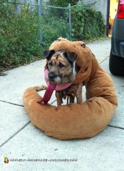 Dog Eaten by Rattlesnake Costume - 1
