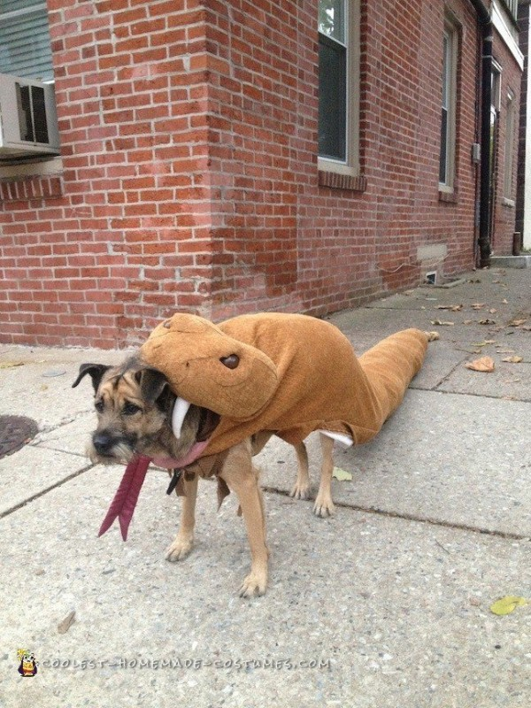 Dog Eaten by Rattlesnake Costume