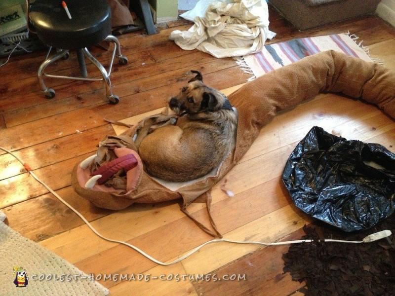 Dog Eaten by Rattlesnake Costume