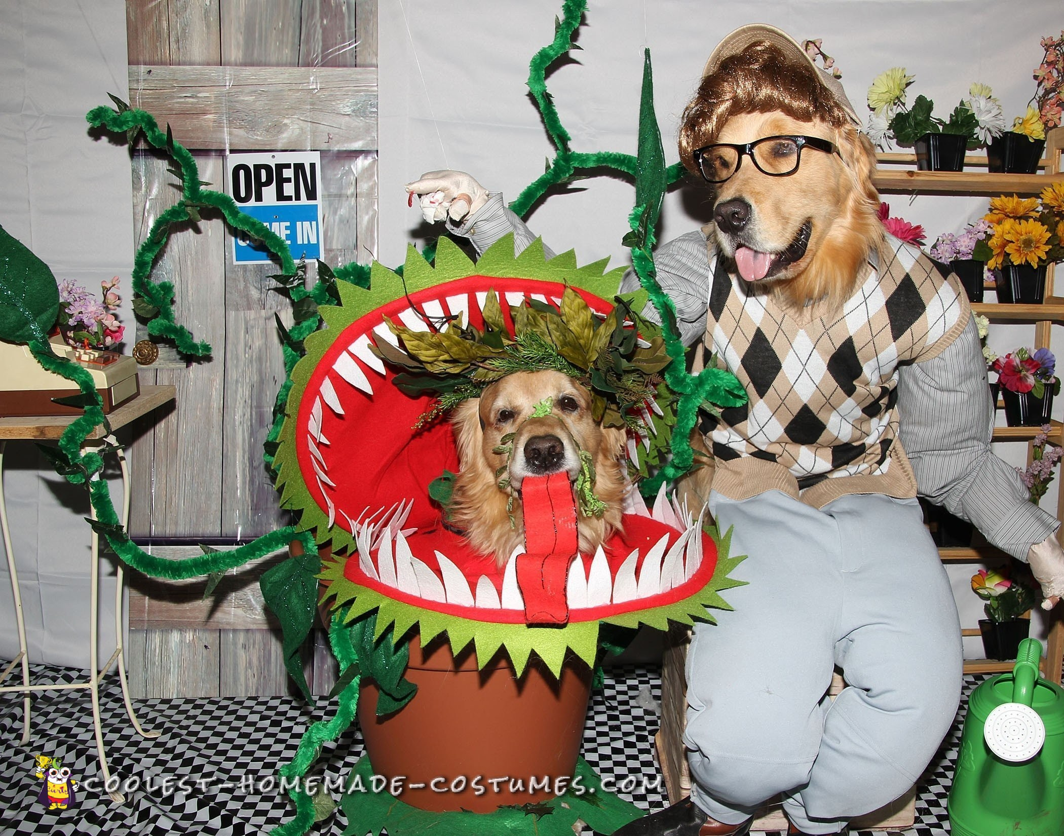 Coolest Little Shop of Horrors Dog Costumes
