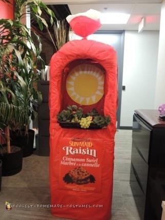 Coolest Sun Maid Bread Costume
