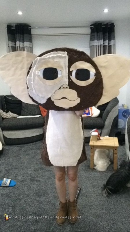 Easy to Make Gizmo Costume