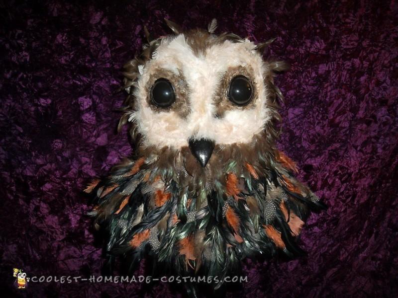 Final work owl head