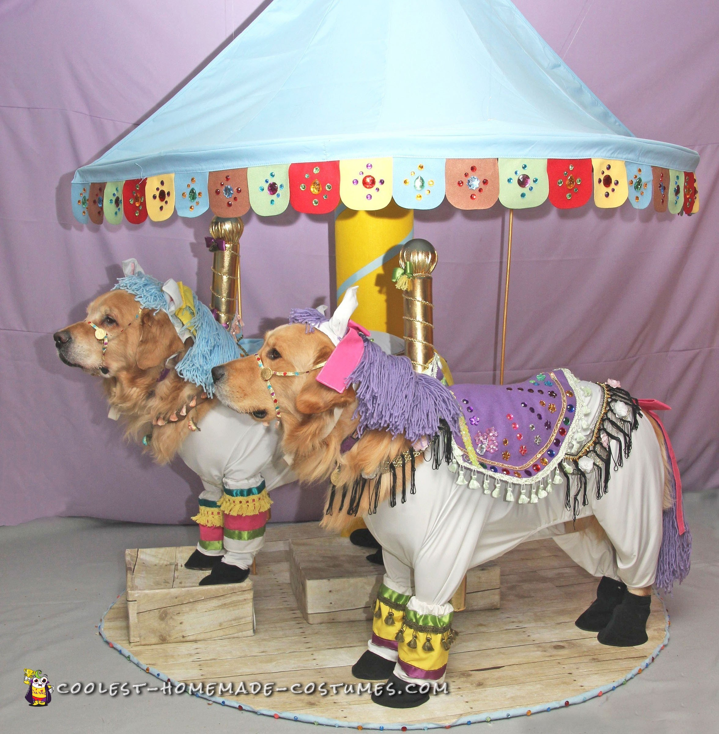 Fanciest Carousel Horse Costumes for Dogs