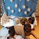 Let it Go Frozen Pet Costumes