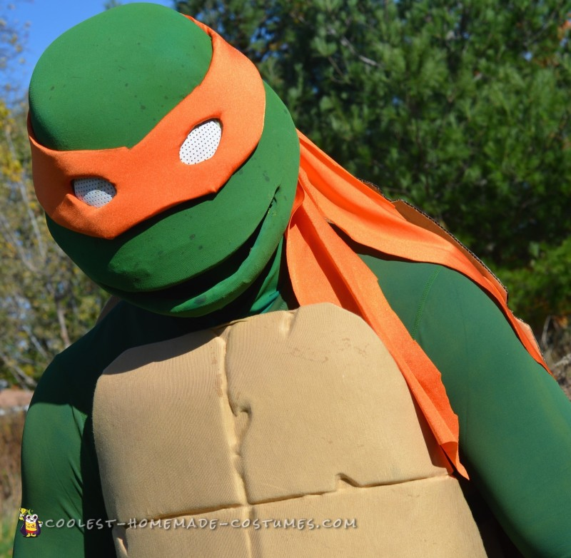 Coolest Ever Nickelodeon TMNT Group Costume - 2